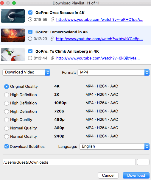 4K Youtube Video Downloader