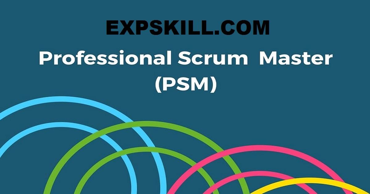 Professional Scrum Masters